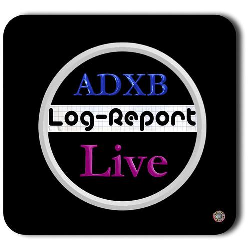 Log report