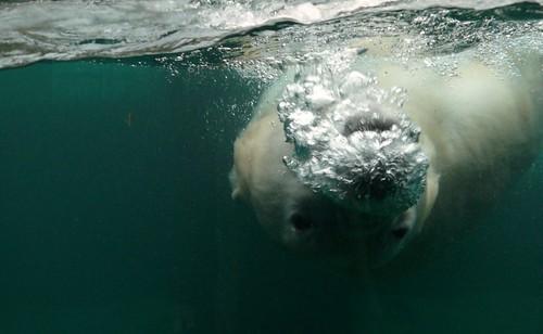 ...to say a friendly bubbly HELLO! :)