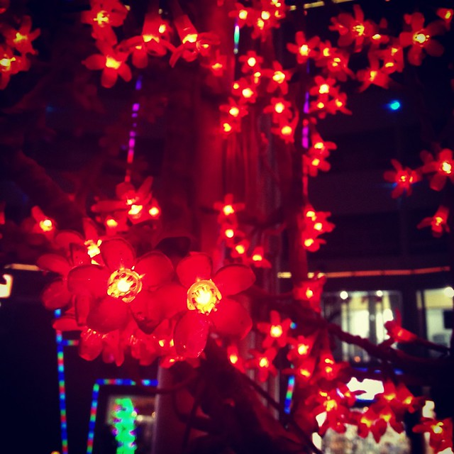 Christmas decoration in Hurghada