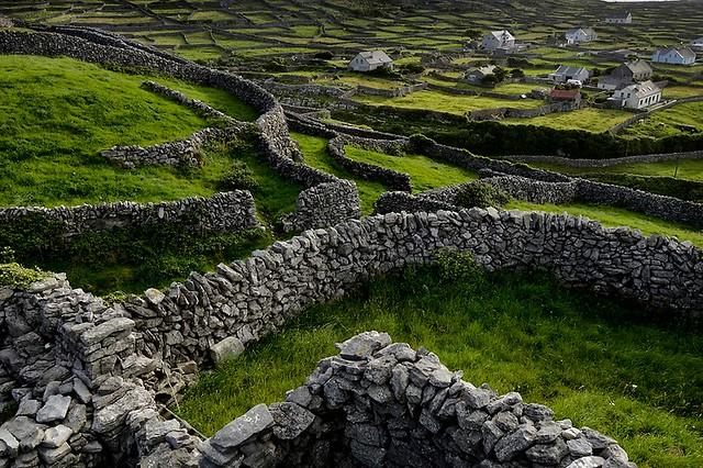 Fences on Inisheer, Aran Islands, Ireland