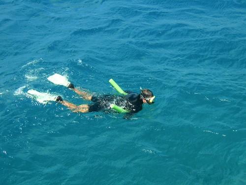VIAGGI: AUSTRALIA 2012 - 584