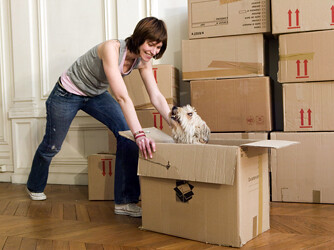 Moving Pets Property Guiding