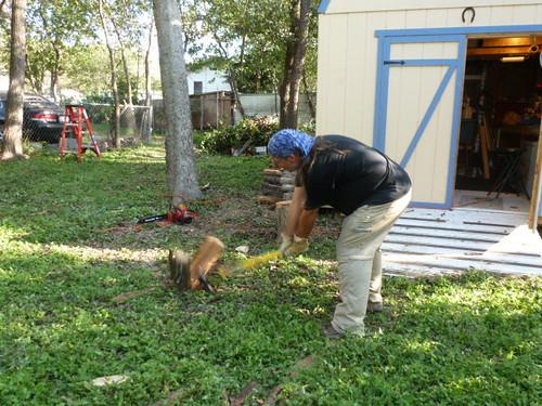 10-20-12 TX - Austin, Dave chopping wood 2