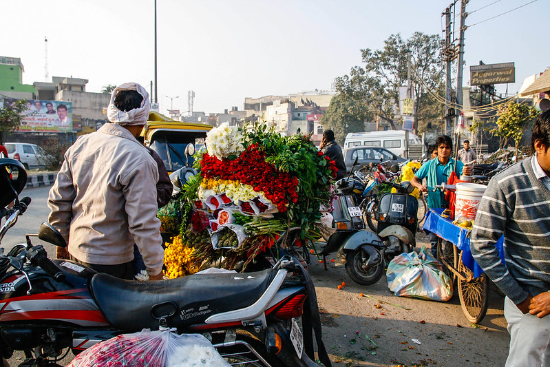 Mehrauli Flower Market_MG_2609November 19, 2012