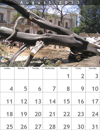 August Calendar (Oaxaca Trees)