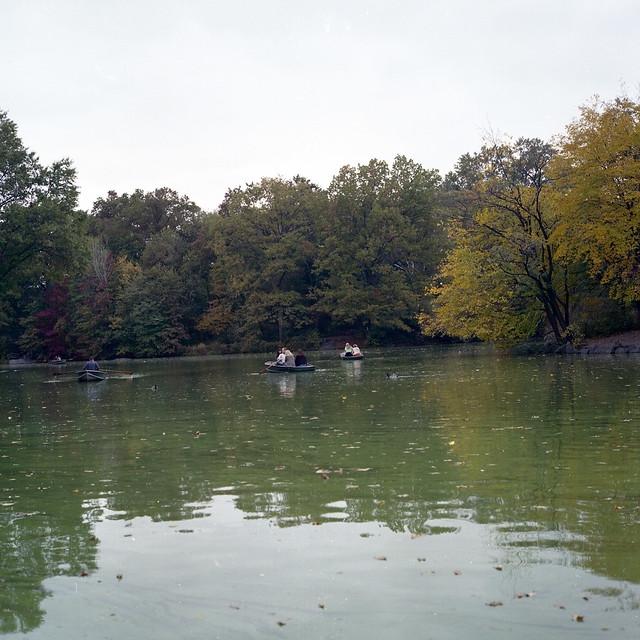 Central Park, Squared