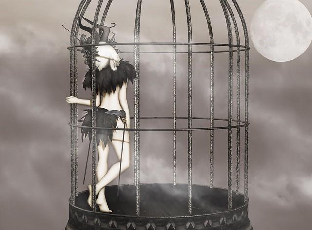 Sorrowful Nightingale