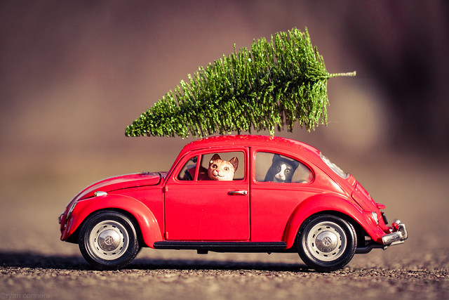 VW Christmas Tree