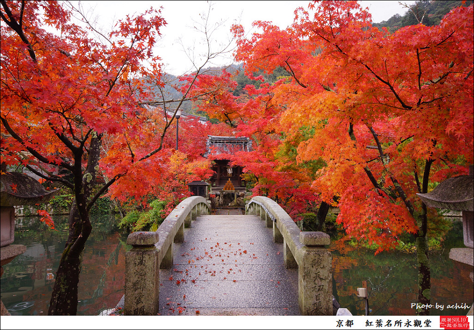 跟著SOLIO一起去旅行: 2012 京都楓葉初體驗~紅葉名所永觀堂