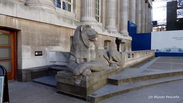 León del Museo Británico - London, UK