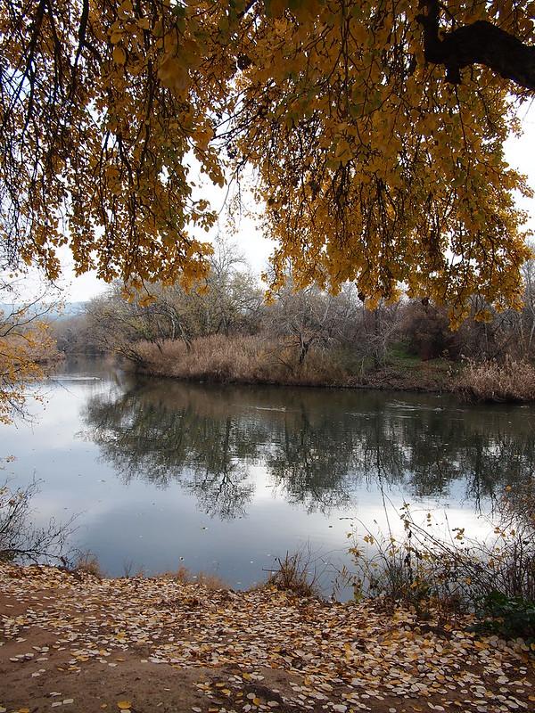 La ribera del Henares (IV)