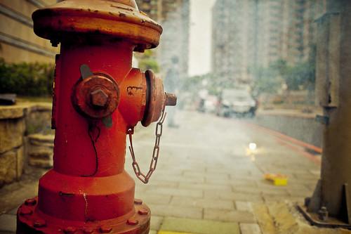 Flickr-0192