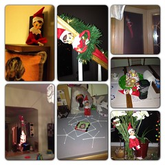 Elf on the shelf antics 2012 (3)