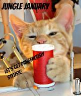 Pretty Grievances's Jungle January Party