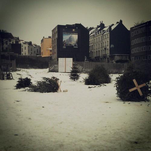 cemetery of xmas trees #brussels #installation #streetart #snow #winter