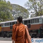 01 Viajefilos en Bangkok, Tailandia 224