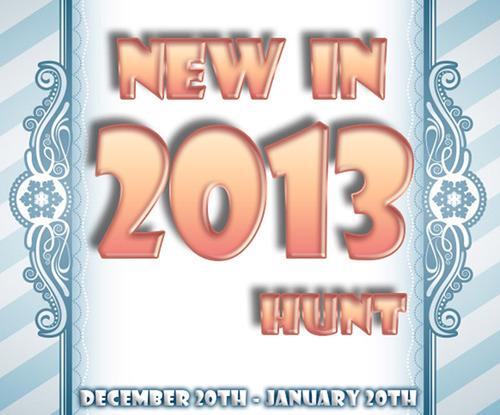 newin2013logo