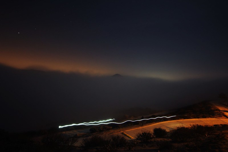 Light Trail in the Fog