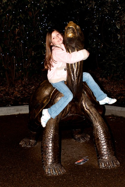Caitlin on the Turtle