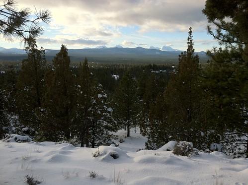snow! trees! mountains!