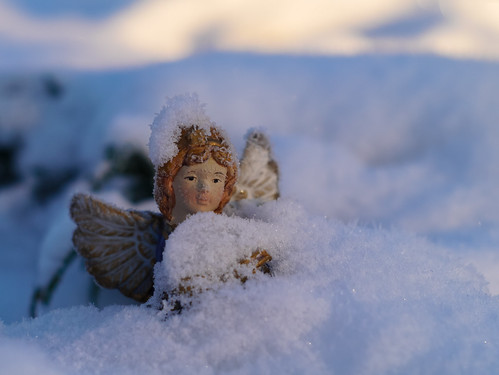 342/366 - Buried in snow by Flubie