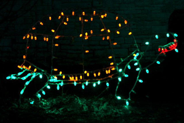 Turtle Lights