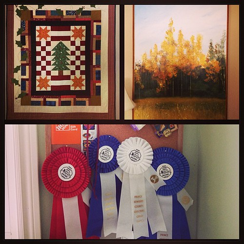 Feb 24 - hung on the wall {a quilt; a painting; my bulletin board with my quilting ribbons} #photoaday