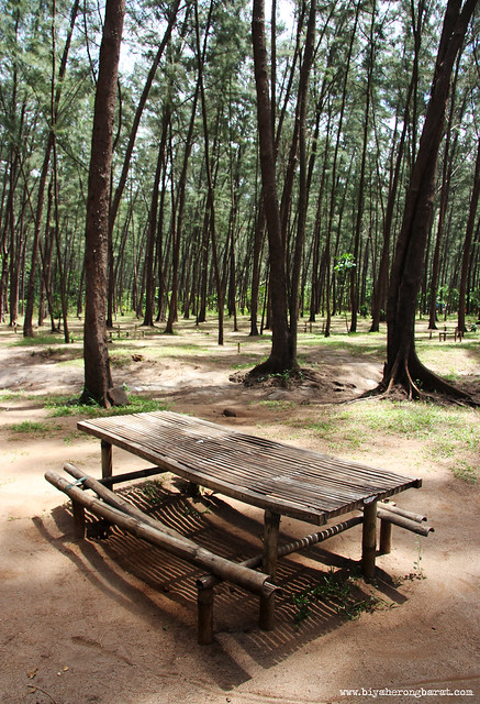 Picnic tables in Anawangin Cove San Antonio Zambales