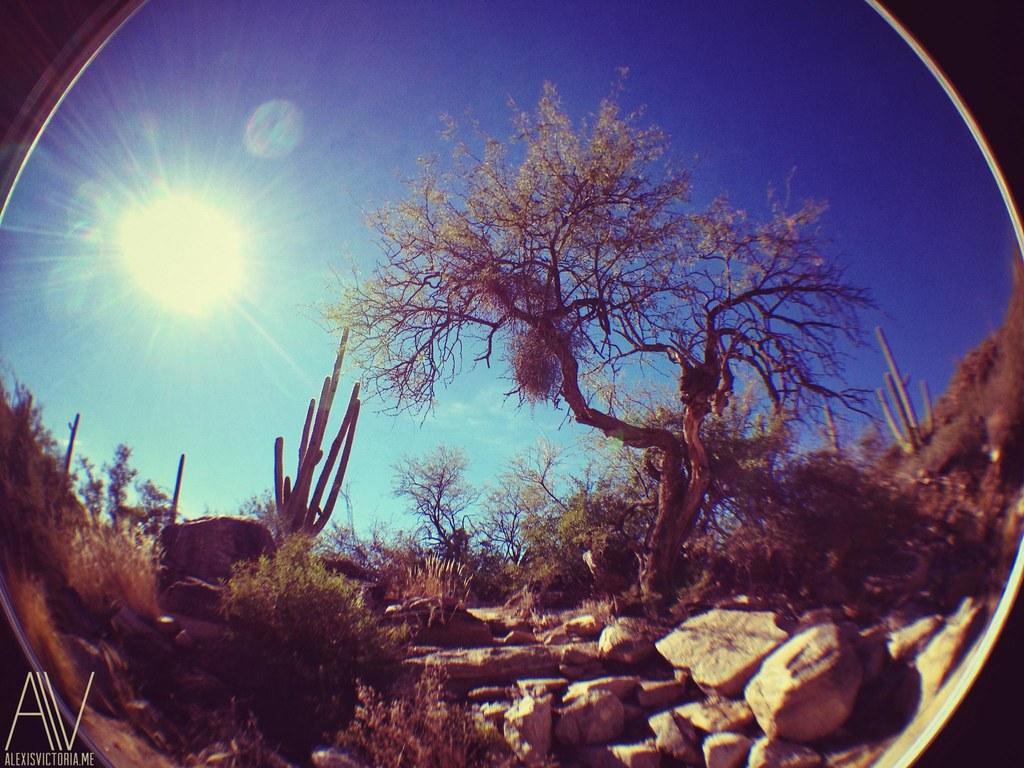 Esperero Canyon