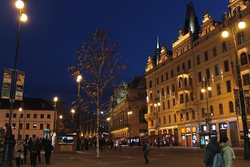 Easter tree on náměstí republiky