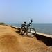 Idyllic road to cycle in Elephanta