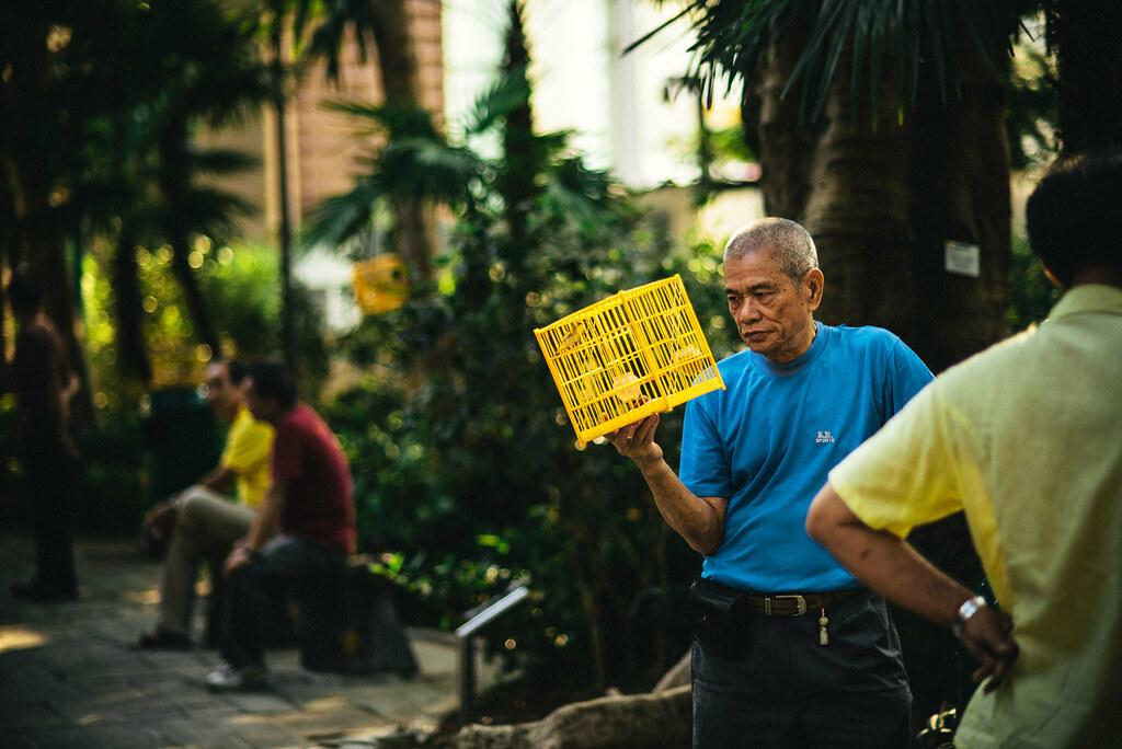 Yuen Po Street Bird Garden-14