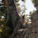 Honduras, ruinas de Copa?n 16