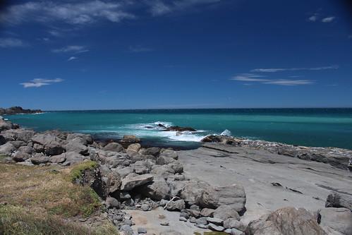 Seal sunbathing spot