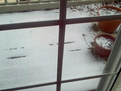 not a snow storm