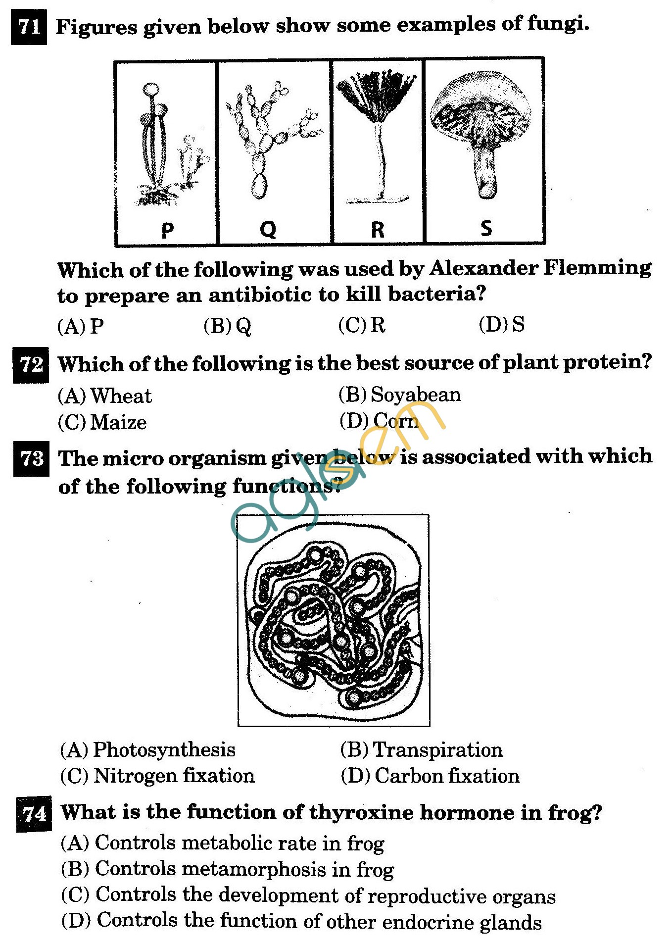 hight resolution of NSTSE 2011 Solved Question Paper for Class VIII - Biology   AglaSem Schools