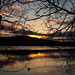 Sunrise | Windermere - 13th March 2013