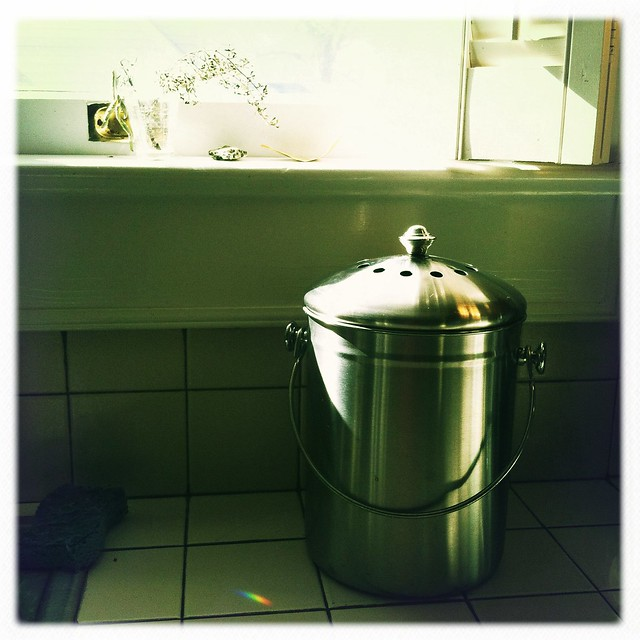 new kitchen compost bin