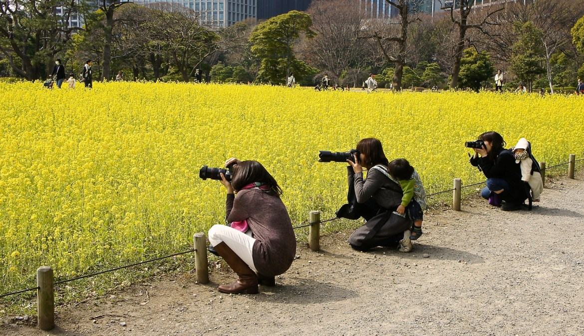 Japanese moms with their camera gear at Hamarikyu gardens, Tokyo
