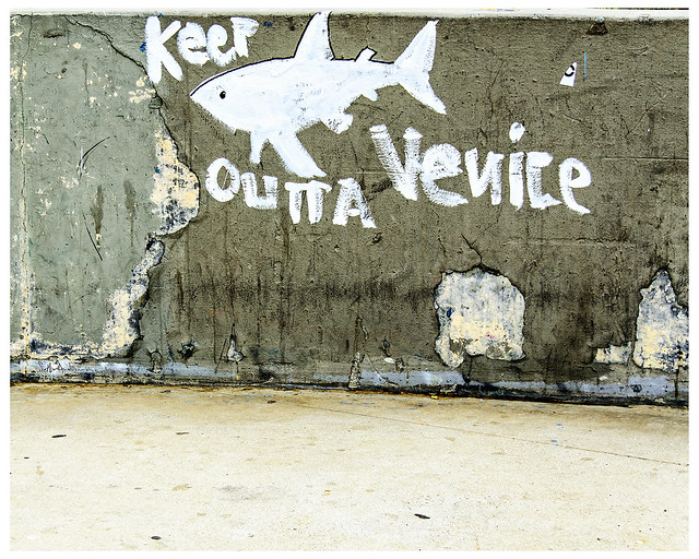 Keep Outta Venice - Number 237