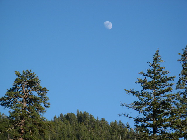 Moon over Olympic National Park