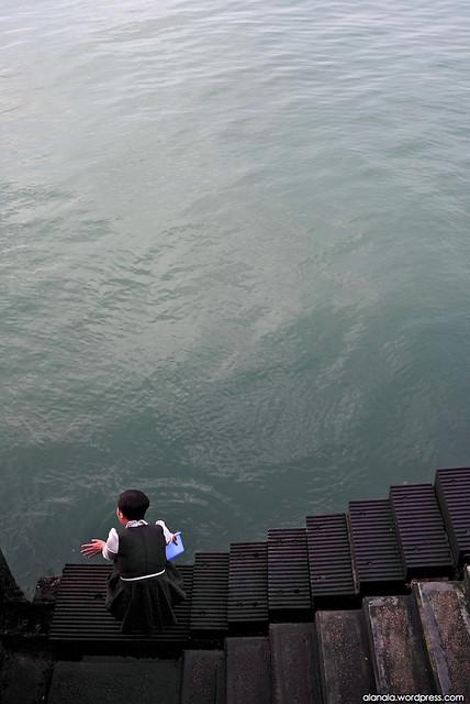 Goodbye - Sea animal release