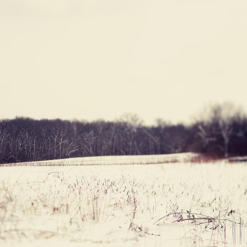 Winter Trina Baker Phtography