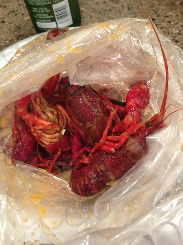 1 pound bag of medium heat crawfish