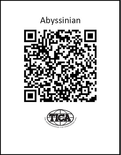 TICA_AbyQRcode