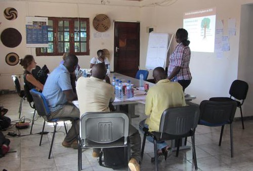 CARE gender officer Nalia Johane trains imGoats project extension staff in Mozambique