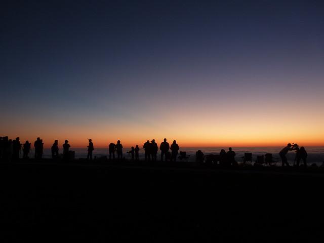 Comet Watchers