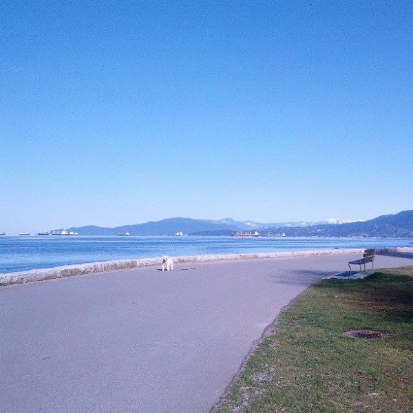 Seawall morning