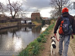 Walk around Ripon River and Canal. April 4th 2013