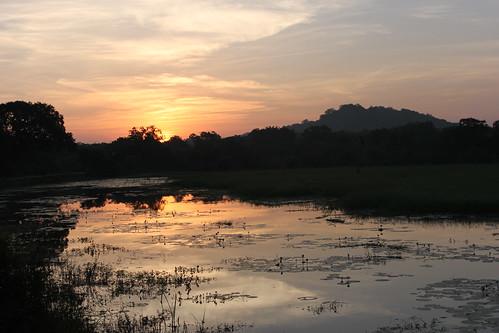 20130121_8211-Yala-sunrise